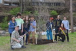community forest nyack memorial park nyack high school