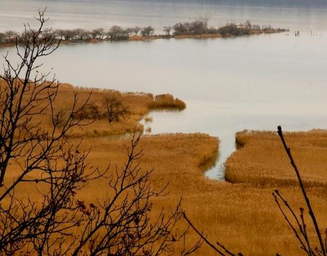 Piermont marsh. Photo Credit: Art Gunther
