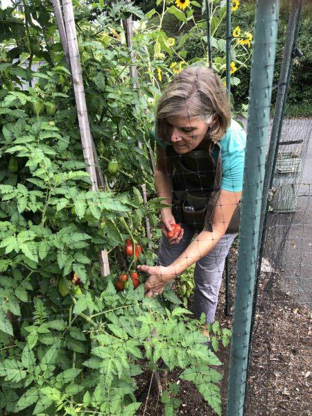 gardening food waste janet fenton